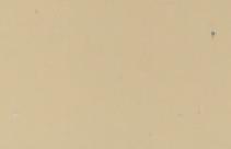 Celta Marfil 7062- Champagne