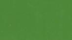 Celta Verde 5006- OPTIMA