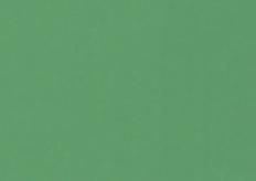 Celta Verde 5031